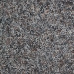 Olympic Brown Granite - Honed Finish